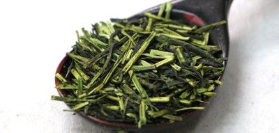 【茎茶】寿かりがね